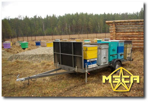 Прицеп для перевозки пчелиных ульев МЗСА (Миасский завод специализированных автомобилей)